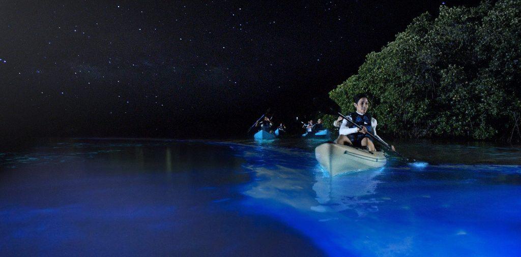 Maldives Glowing Beaches